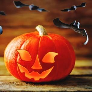 [Free Module] Prestashop Art Pipistrelli per Halloween